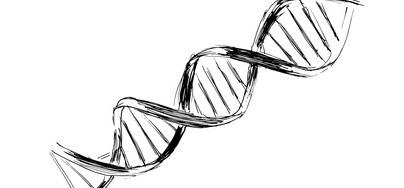 DNA-Strang. Beweismittel im Revisionsverfahren.
