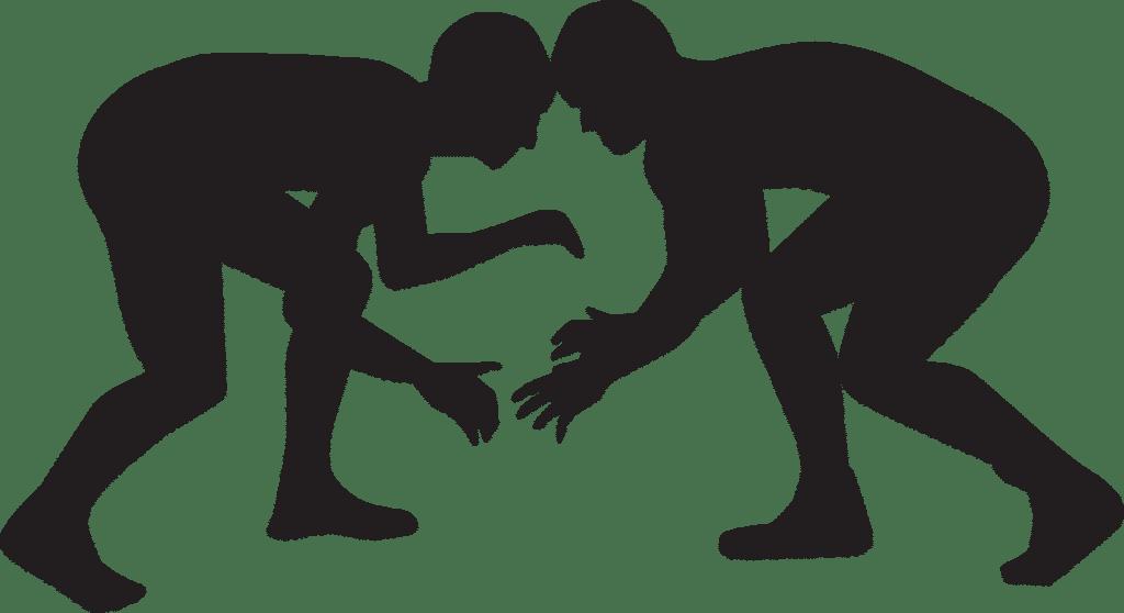 Kampf Revisionsverfahren