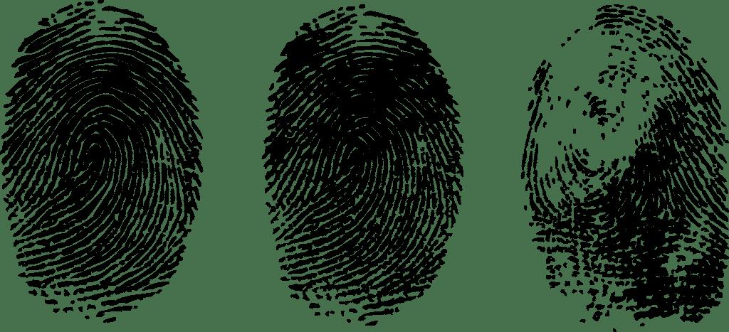 Fingerabdrücke: Beweismittel im Revisionsverfahren